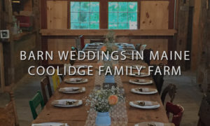Rusting Wedding Reception at Coolidge Family Farm
